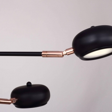 Подвесная светодиодная люстра Favourite Ellisse 1749-12U