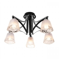 Потолочная люстра Silver Light Montenegro 703.59.5