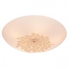 Потолочный светильник Silver Light Verbena 835.50.5